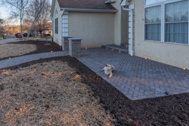 Front Paver Patio with Hank (the dog)